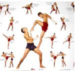 Os Golpes do Muay Thai